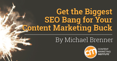 brenner-seo-content-marketing-buck-cover