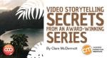 video-storytelling-visa