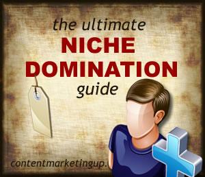 niche domination guide