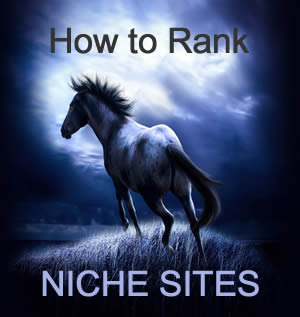 how to rank new sites
