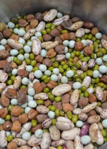 How to make sprouts   easy way to make mixed beans sprout