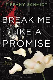 Break Me Like a Promise - Tiffany Schmist