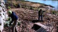 Organic Foods: Backyard Agriculture (video)