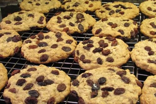 Medium Of Quaker Oatmeal Raisin Cookies