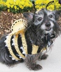 26 Beautiful Crochet Bee Patterns