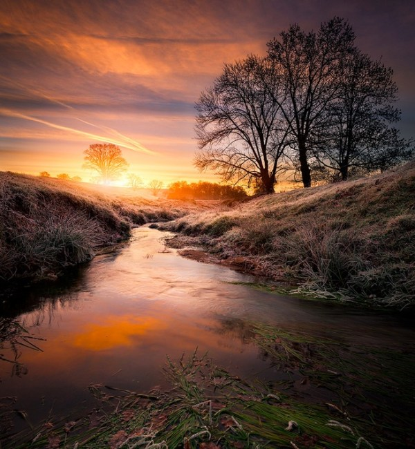 The stream sunrise