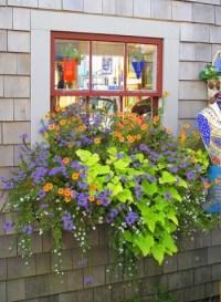 Window Box Ideas - Cool Garden Ideas