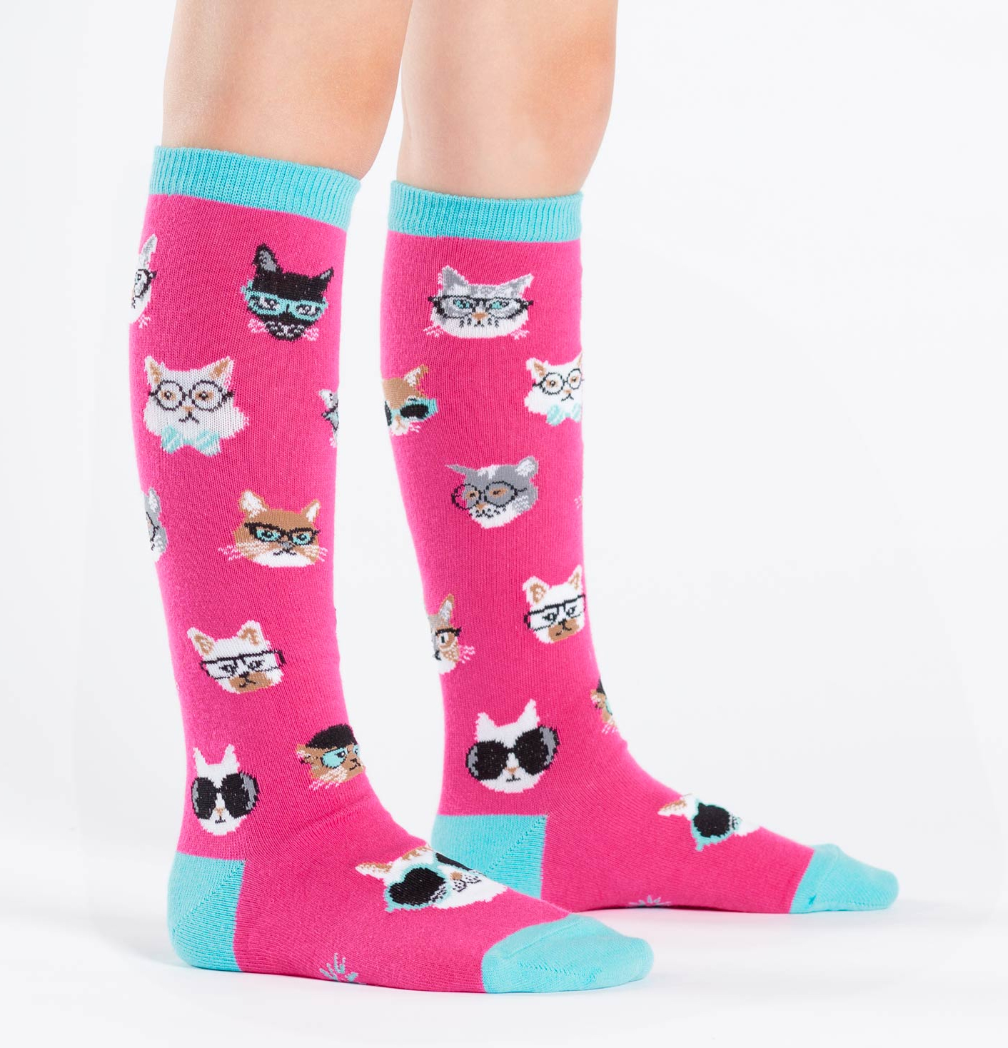 Cool Cat Supplies Hot Trend 15 Hipster Cat Accessories And School Supplies