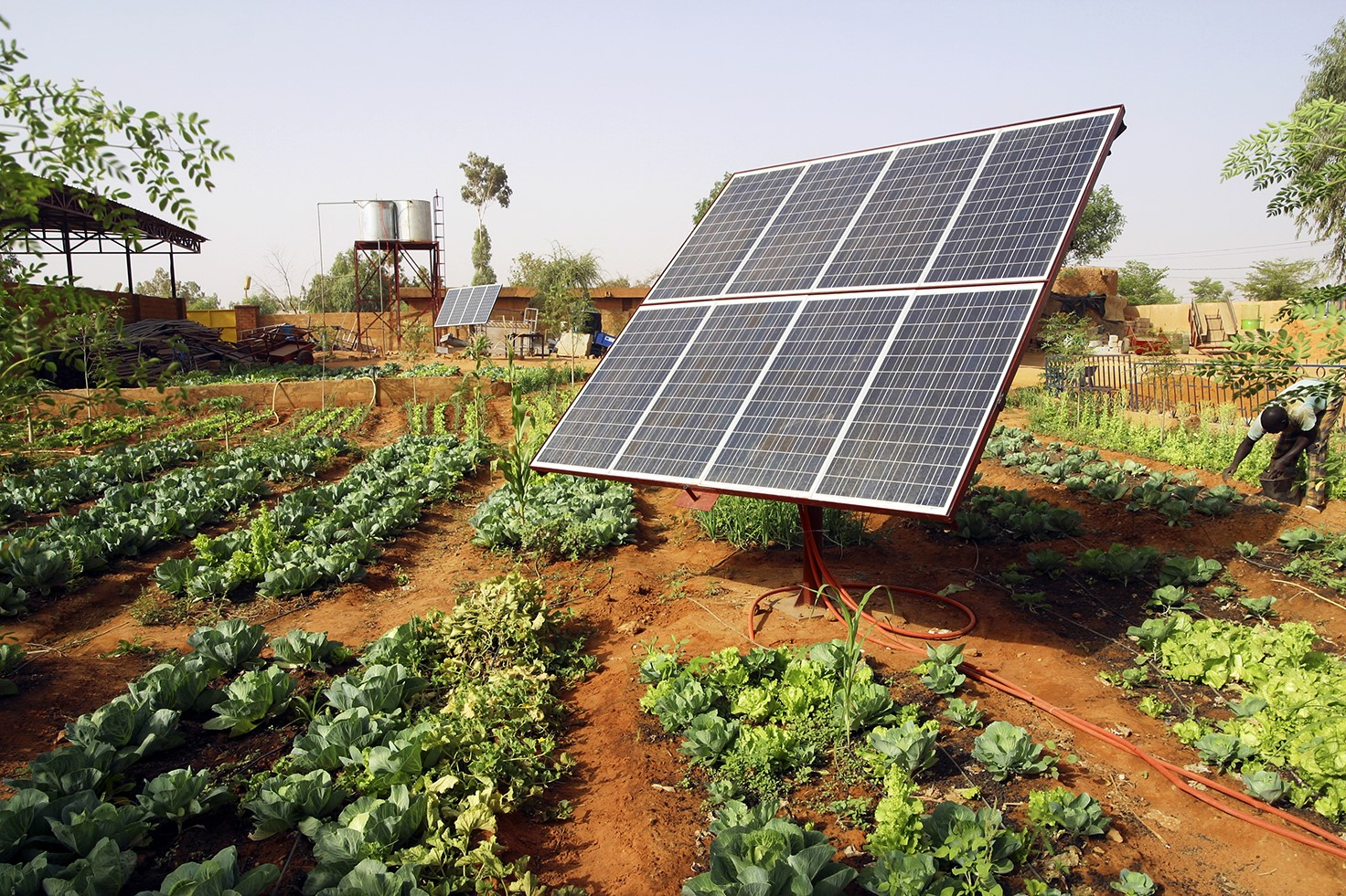 Renewables for Growing Food and for Growing the Economy