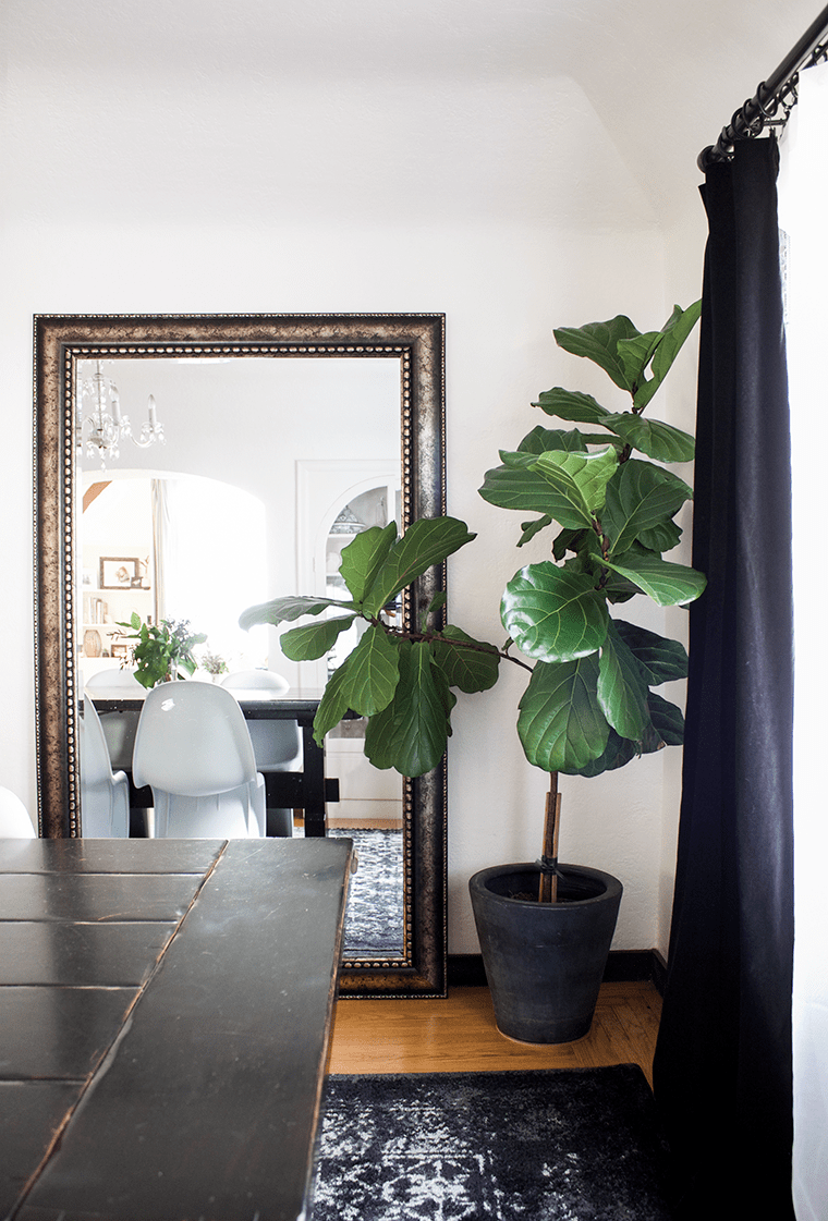 Luxe Sofa Pottery Barn Faux Potted Fiddle Leaf Tree - Copy Cat Chic