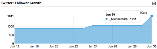 Twitter Follower Growth - image