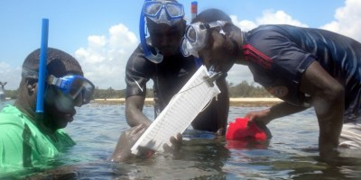 community coral reef monitoring