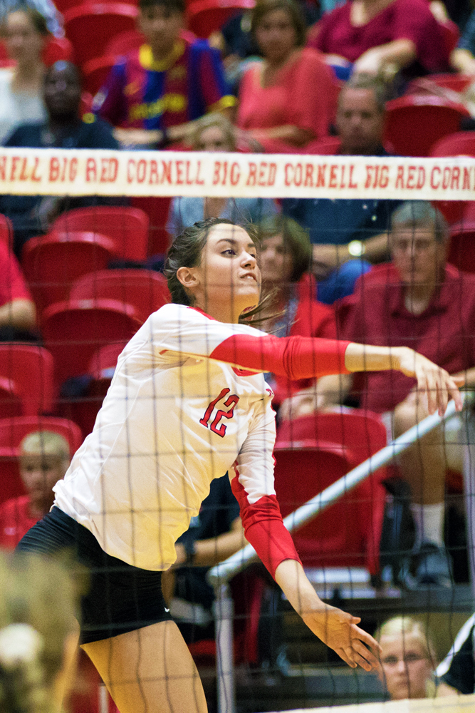 Jason Ben Nathan / Sun Senior Photographer Freshman hitter Carla Sganderlla had 20 kills in the Red's game against Yale.
