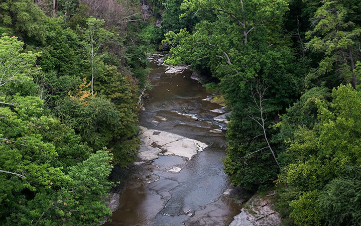 Low water levels in the Ithaca area may lead to mandatory water restrictions and rationing.