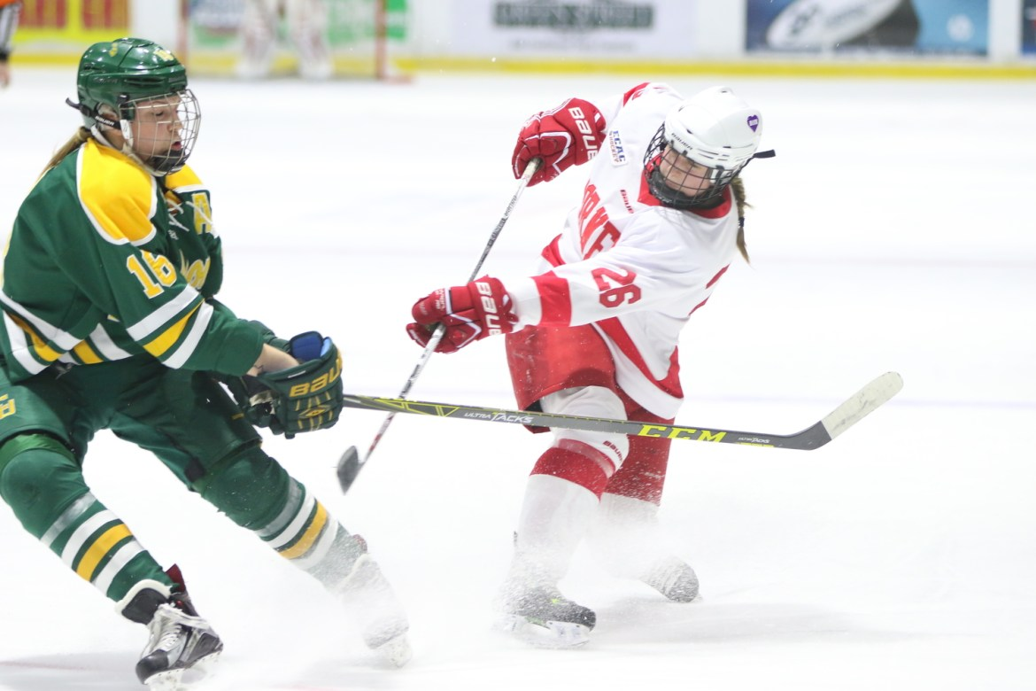 The Red begins its ECAC schedule this weekend against RPI and Union.