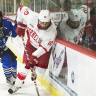Cornell swept Alabama-Huntsville last weekend to open the season.