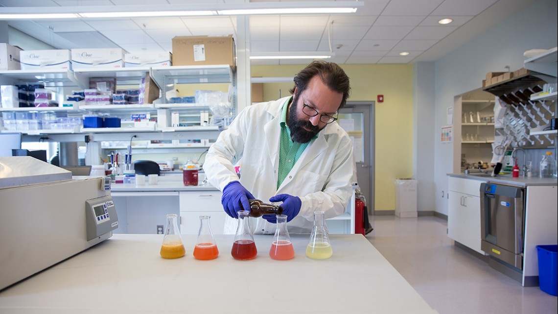 Prof. Alcaine M.S. '07 and a team of researchers are developing beer made from dairy byproducts.