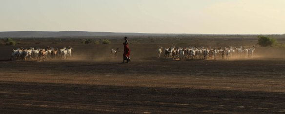 Nomads in Lake Turkana