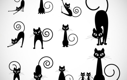 CDev - Free Vectors, PSD Graphics, Backgrounds  More