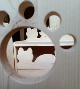 5P Kittens' Box