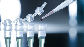 adult-stem-cell-storage-cosmetic-surgical-arts-lynnwood-mount-vernon-seattle