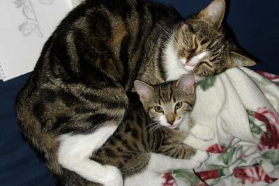 Tara och mamma Mathilda.