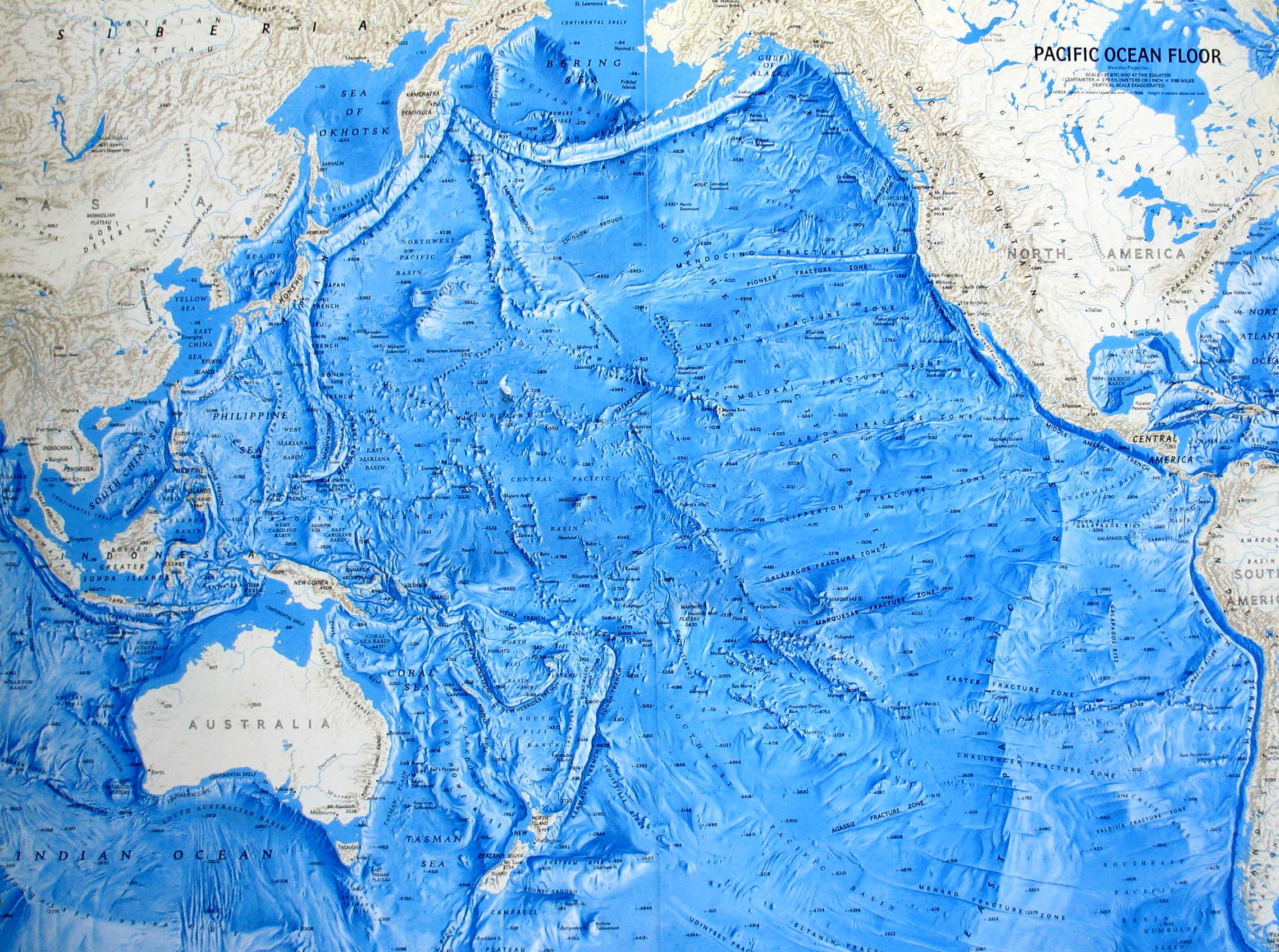 Pacific Ocean Map Relief Of The Oceanic Floor