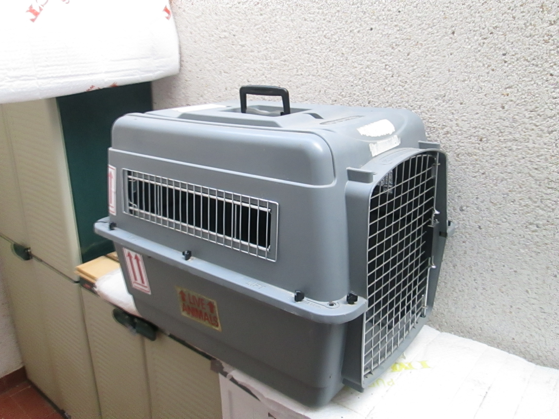 Pet Carrier On Sale For Sale Used Pet Carrier Airline Approved Used Once Only
