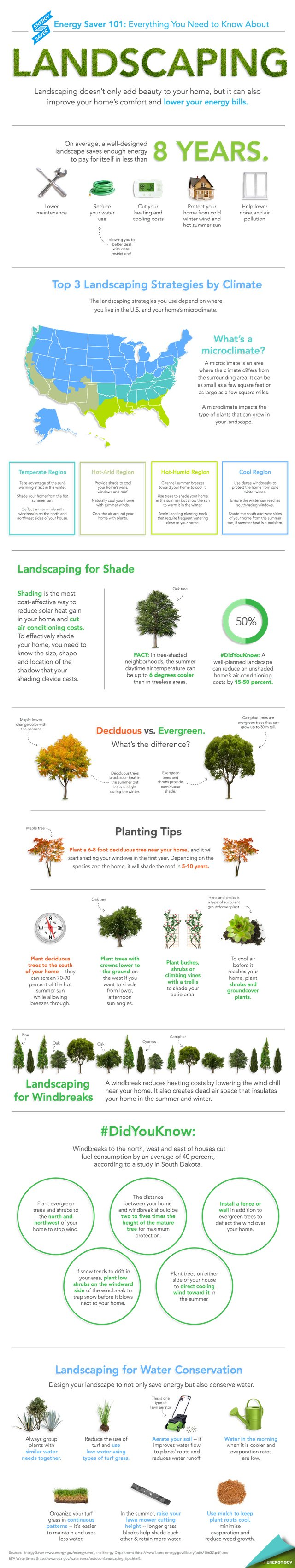 Energy Saving Landscaping Tips [Infographic]