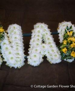 Nan Tribute