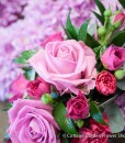 Pink Mum Tribute Detail