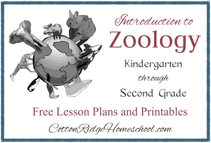 Introduction to Zoology for Early Elementary Students ~ 12 Lesson