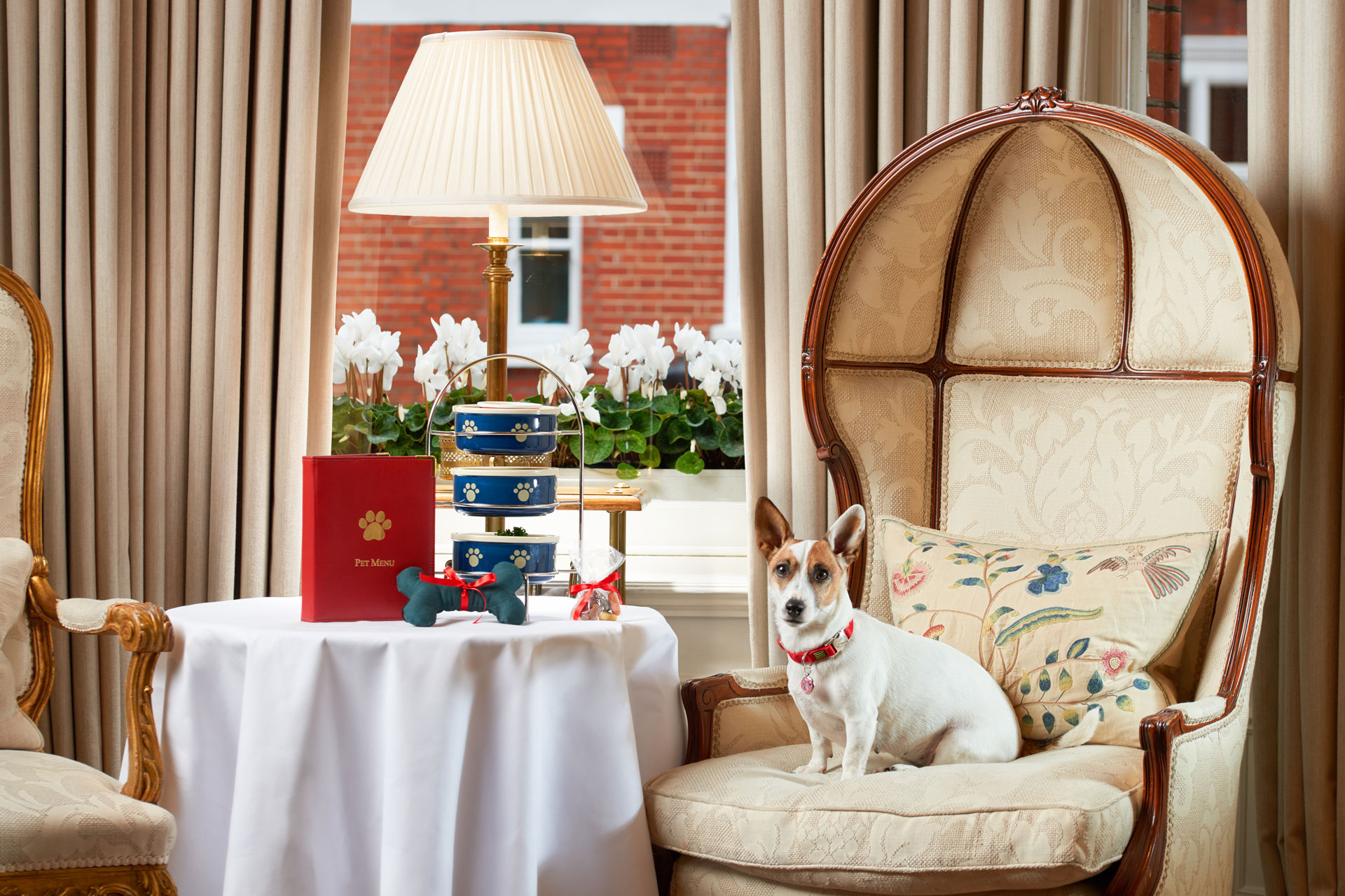 The Uk S Best Dog Friendly Hotels Travel Country And Town House