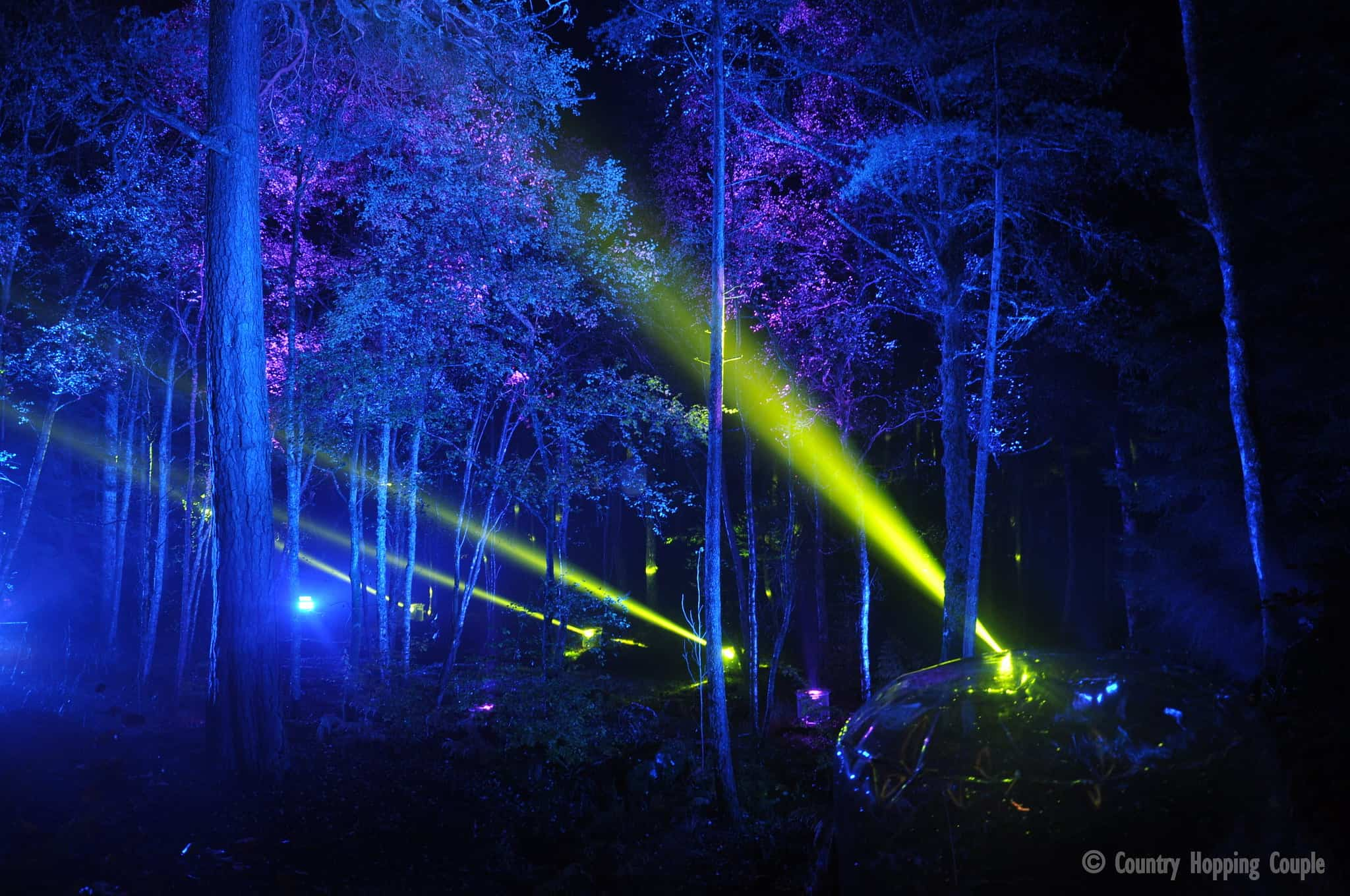 The Enchanted Forest In Pitlochry A Stunning Attraction In Scotland