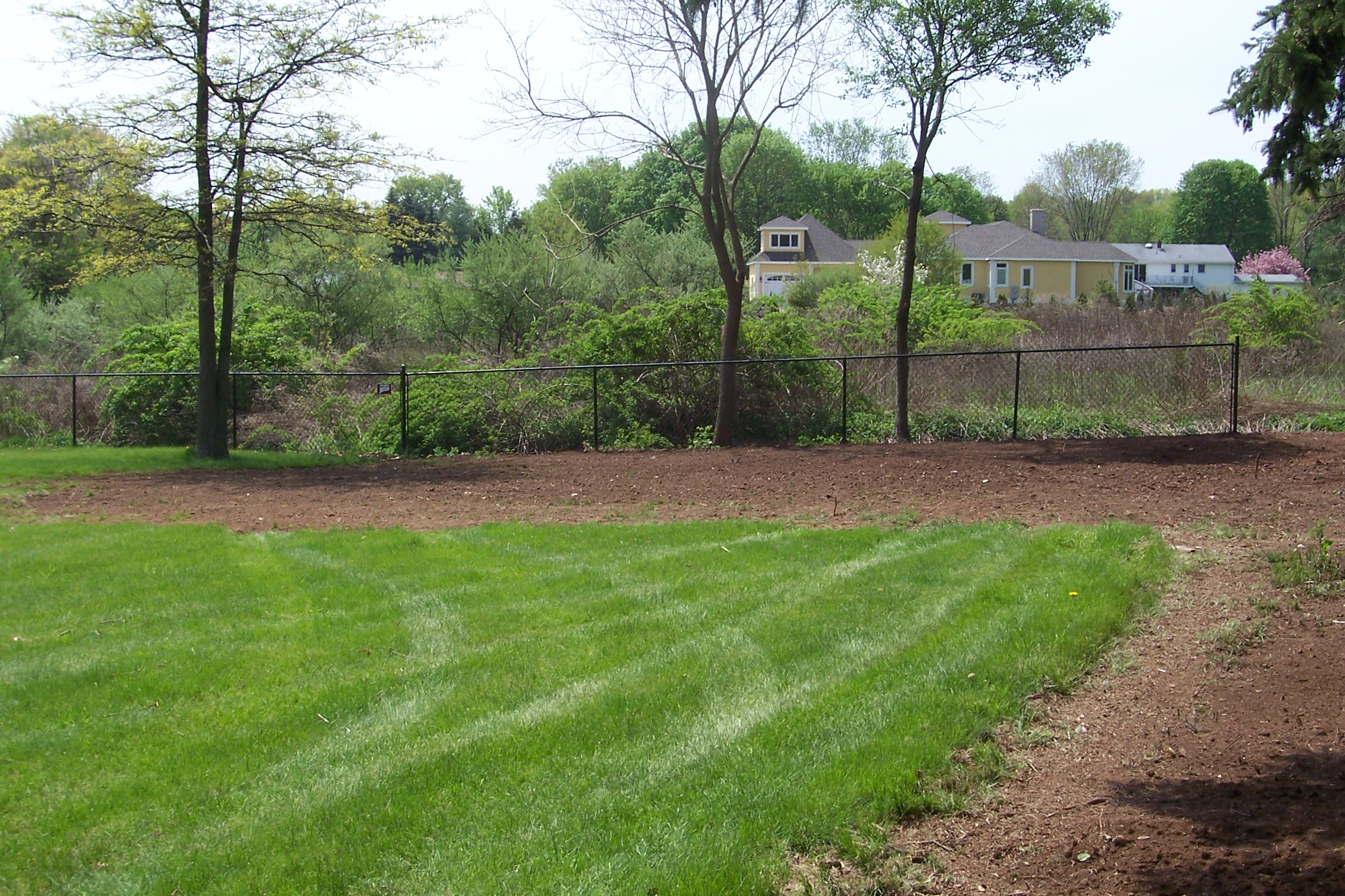 Backyard Clean Up Backyard Clean Up Country Landscaping Llc