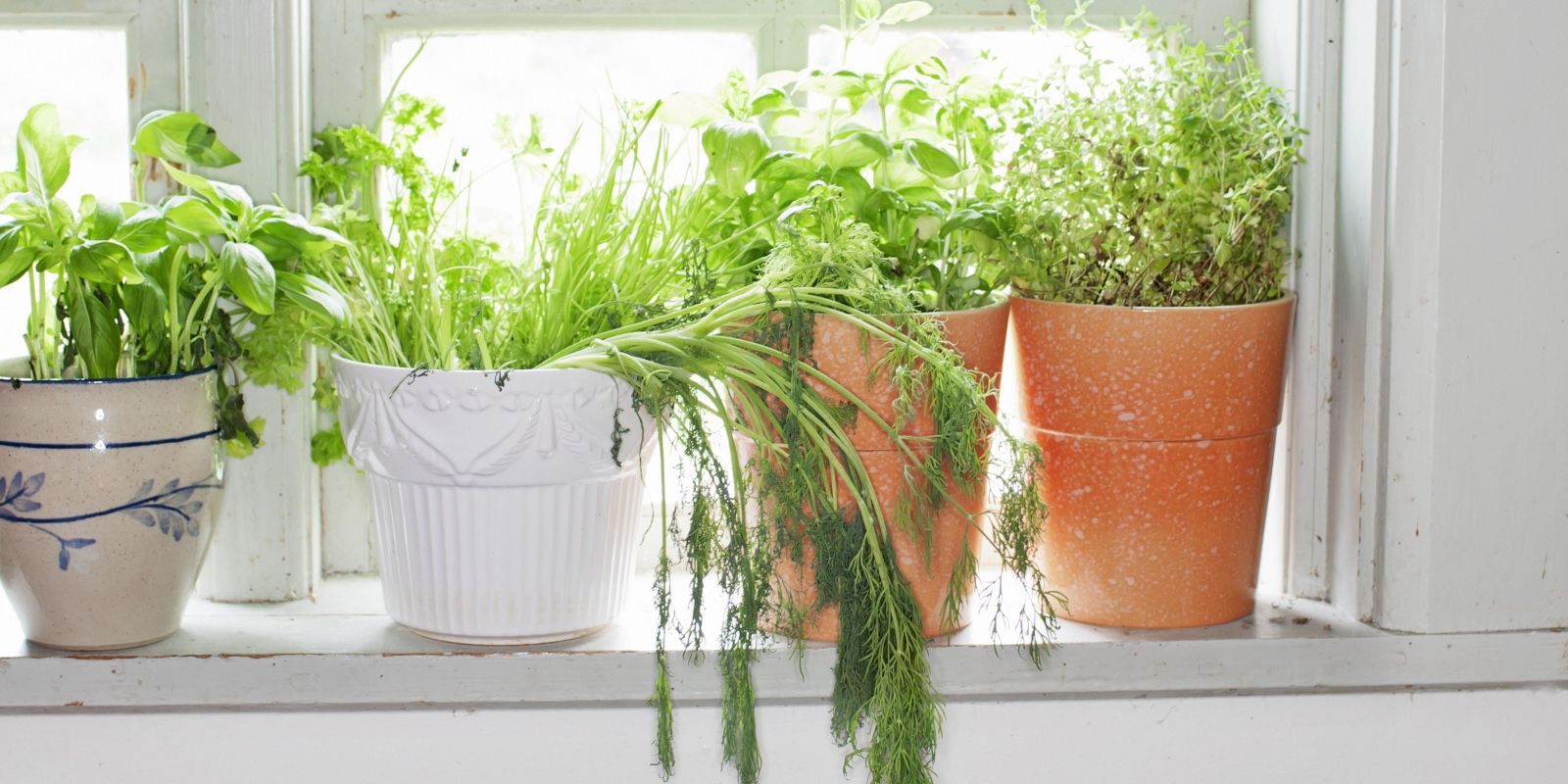 Kitchen Herb Pot How To Make Rustic Kitchen Herb Containers