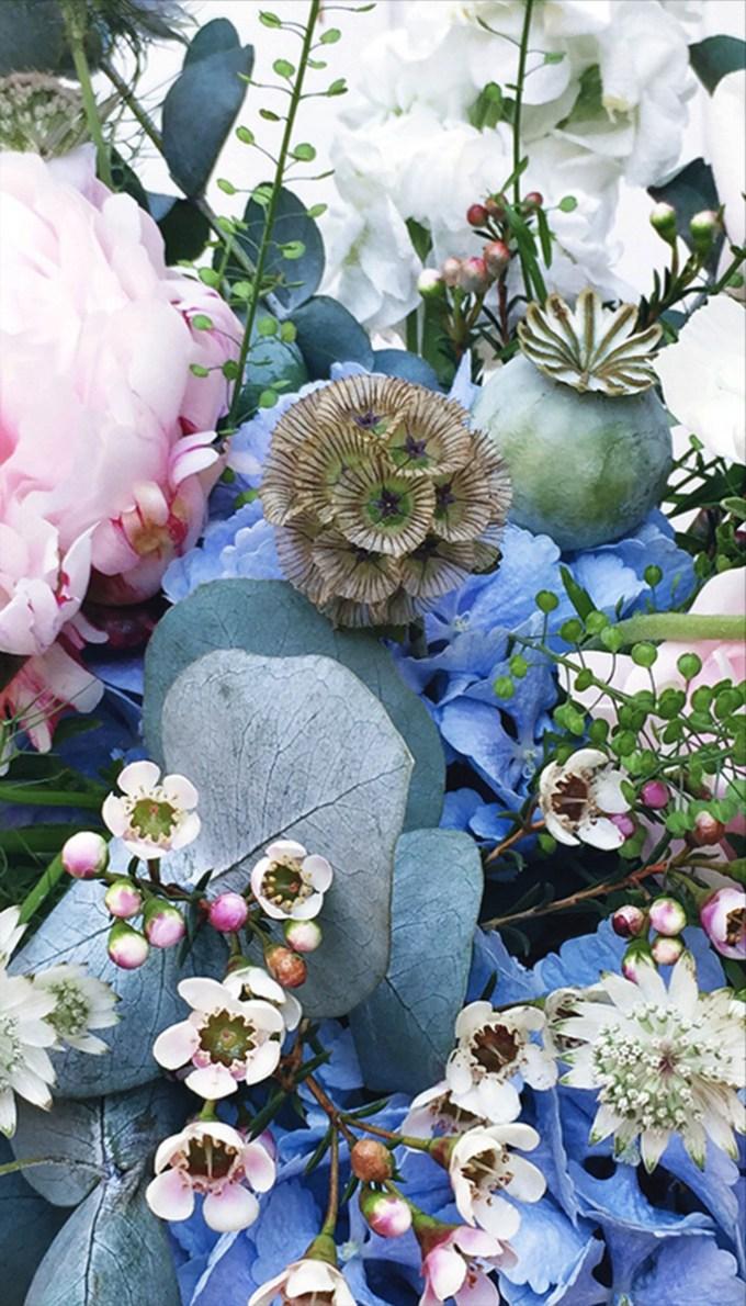 peonies scabious wax flower