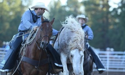 Flagstaff Pro Rodeo 2019 - Cowboy Lifestyle Network
