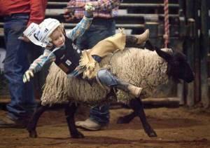 Cowboyology