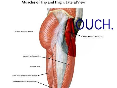 Image Gallery hip flexor diagram