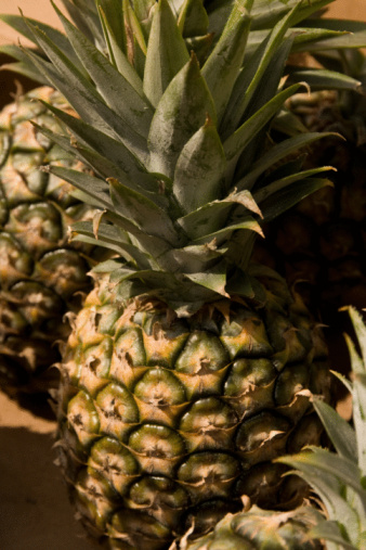 How to Grow Pineapples From Seeds Hunker