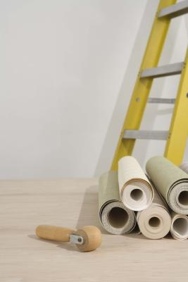 How to Apply Wallpaper Over Glossy Paint   HomeSteady