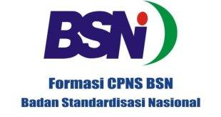 Formasi-Lowongan-CPNS-Badan-Standardisasi-Nasional-BSN
