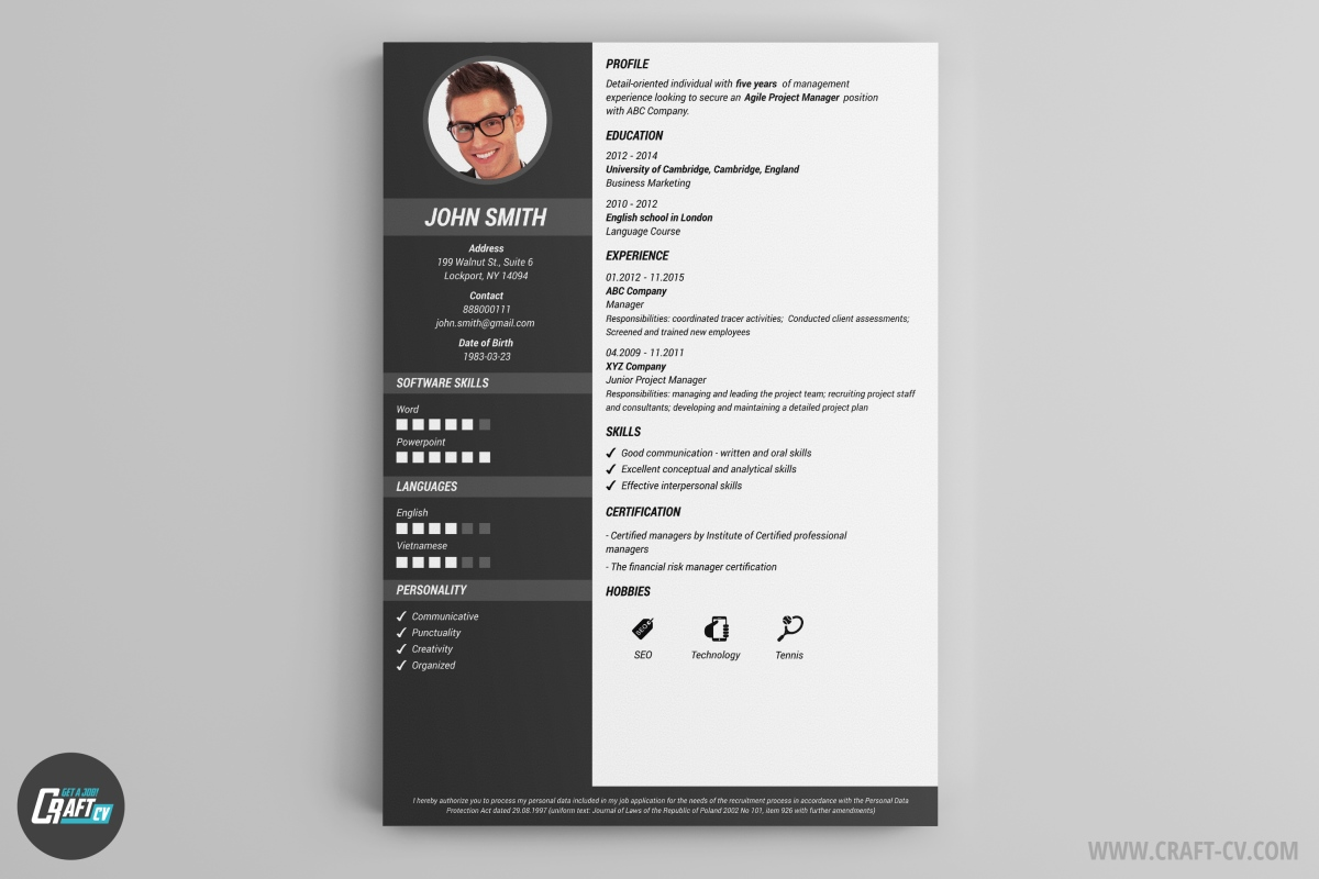 cv examples design sample customer service resume cv examples design 50 awesome resume designs that will bag the job cv maker professional cv