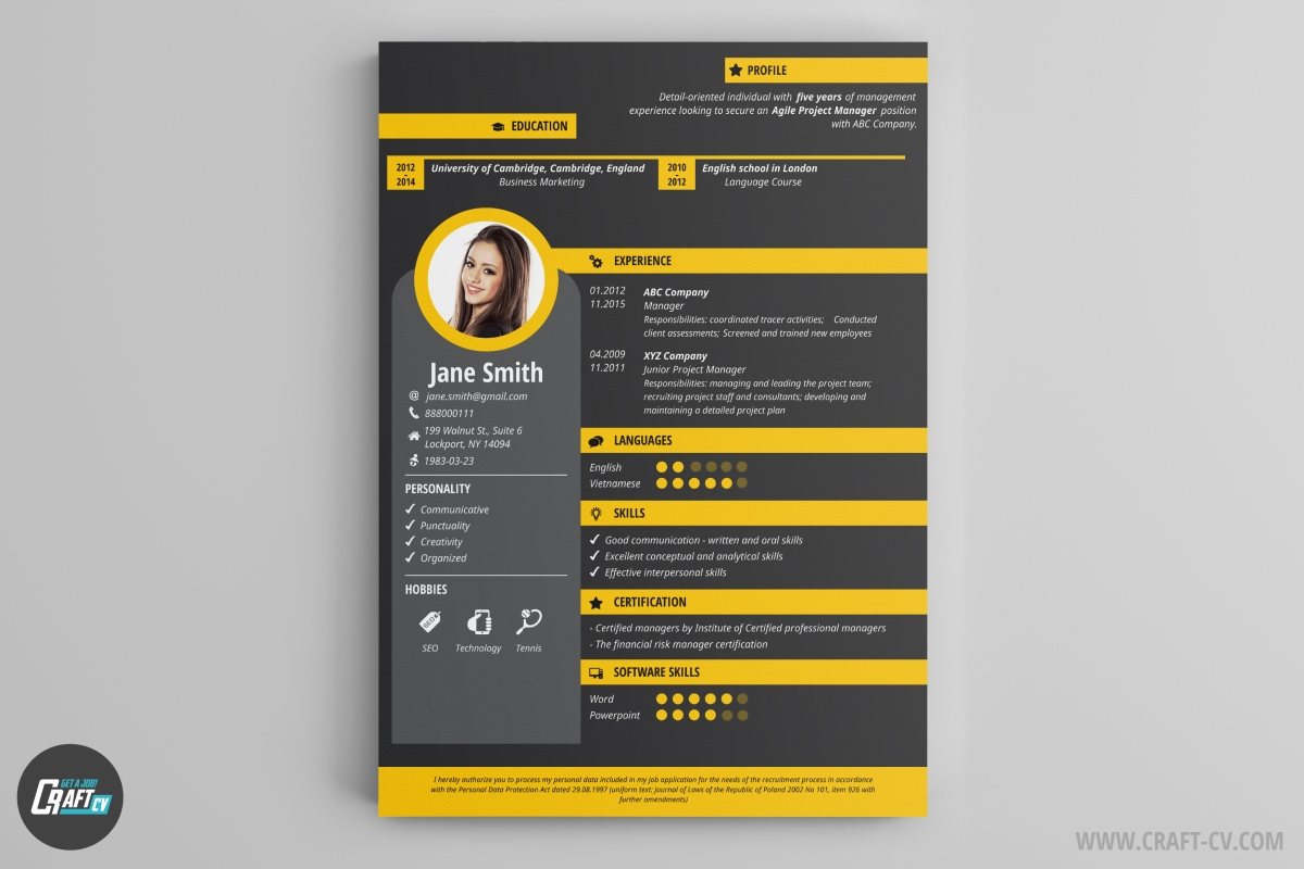 most innovative resume templates