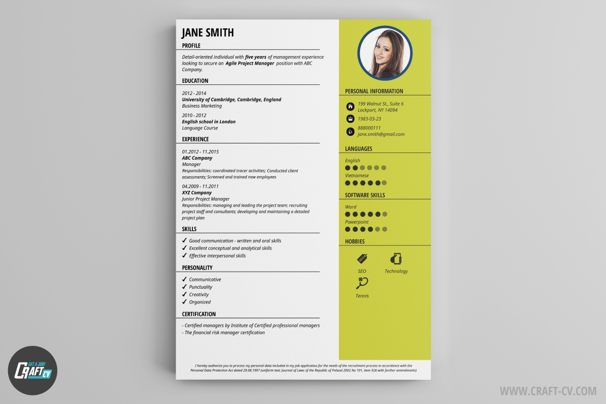 how to make a great cv examples