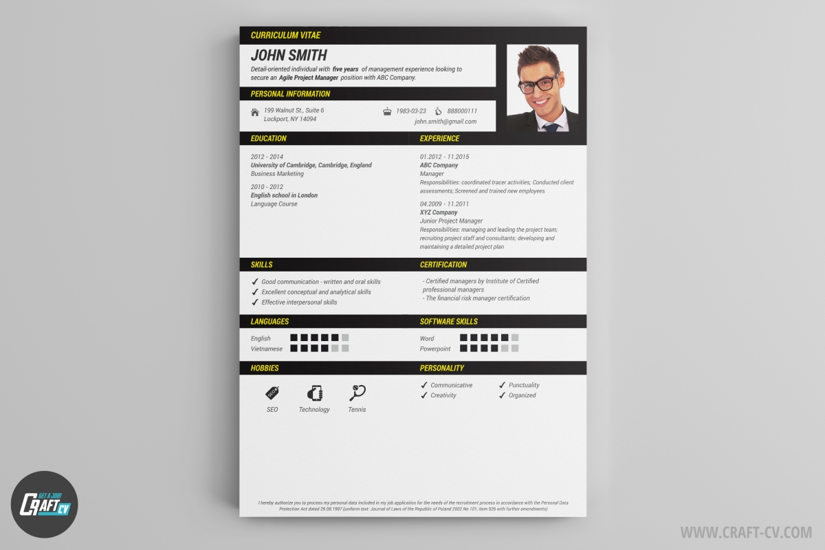 modele de cv originaux manager innovation