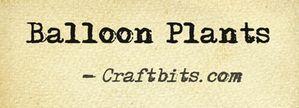 balloon-plants