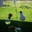 light-bulb-vase-2