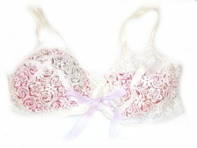Scented Bra Pouch